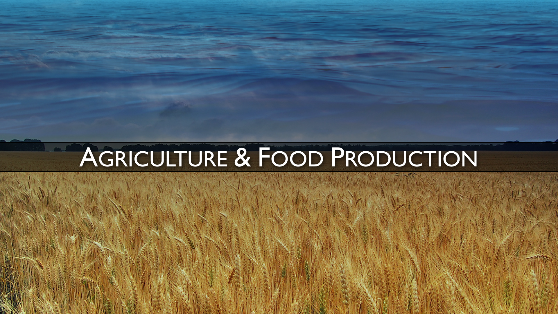 Agriculture - Food Production