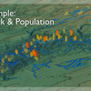 COVE Image: DHSVM Stream Network and Population