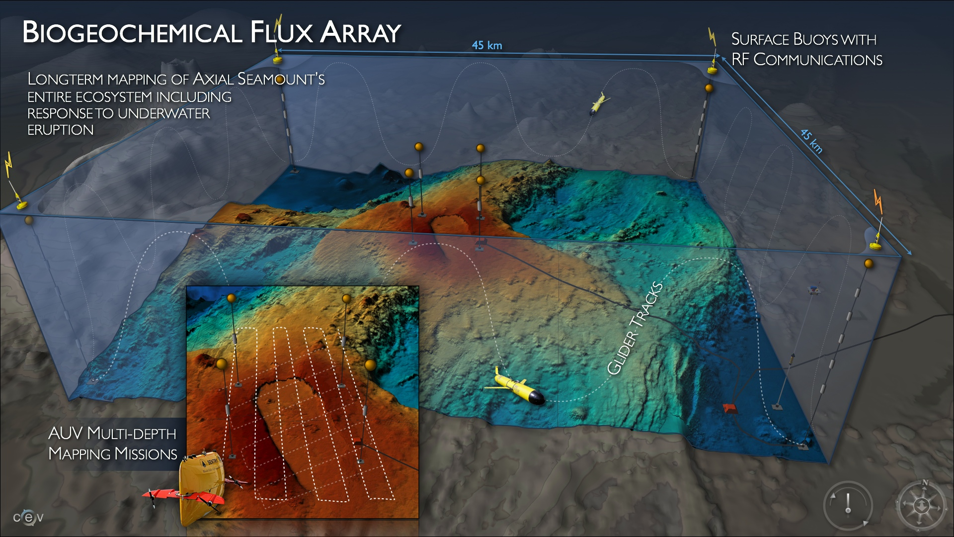 Biogeochemical Flux Array