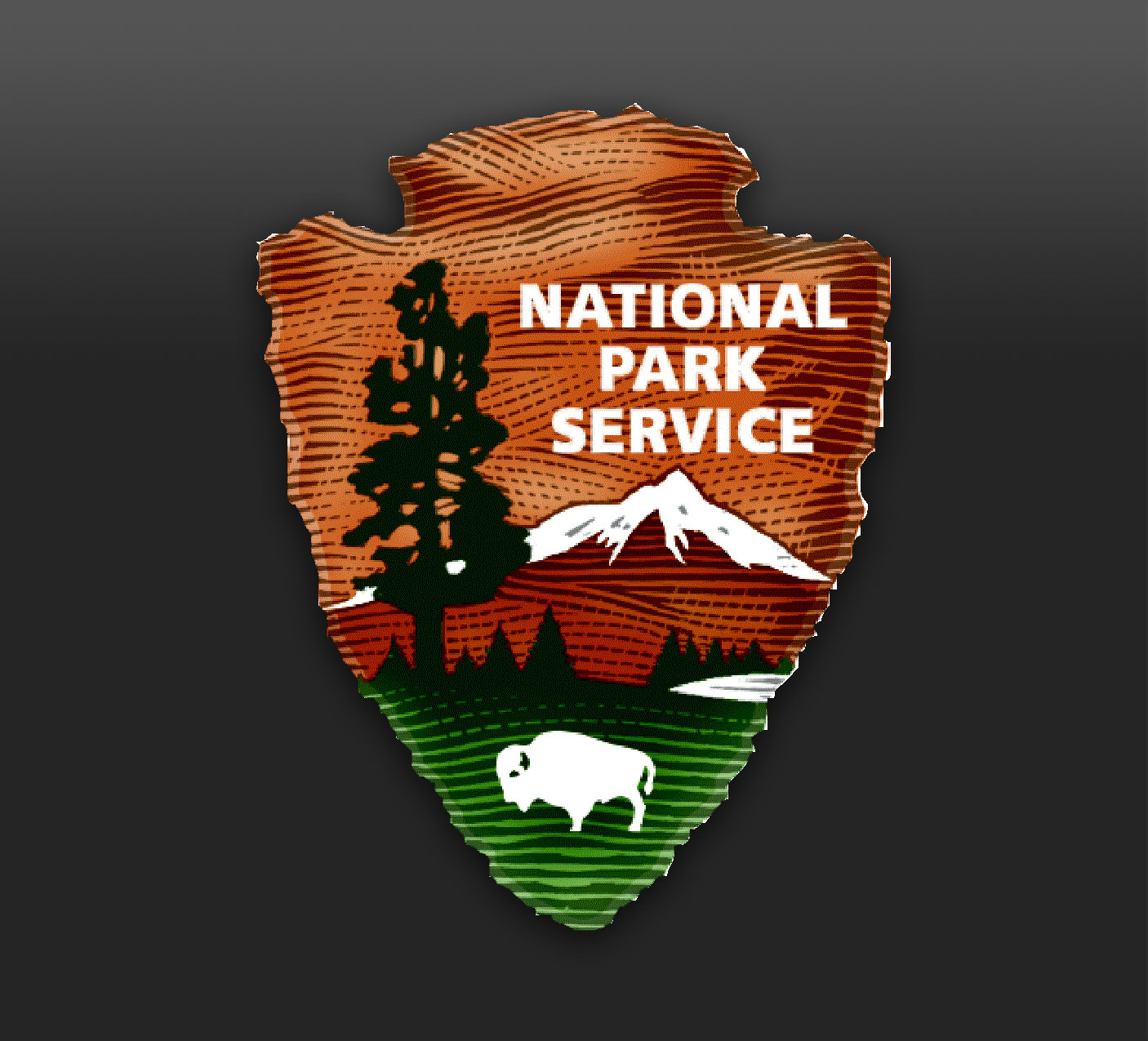 download national park service