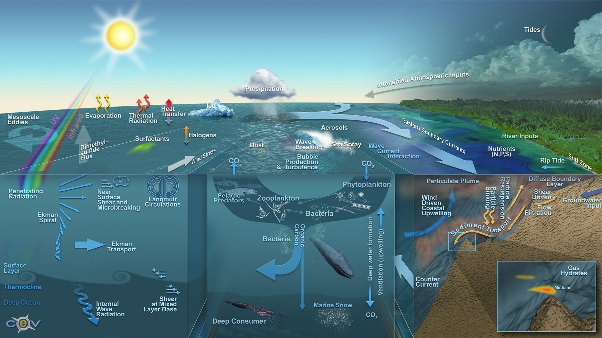 Ocean Science Processes - Ocean Segment